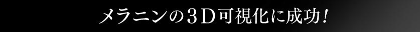 メラニンの3D可視化に成功!