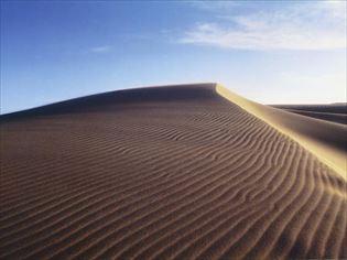 【鳥取砂丘】10万年をかけて風と砂が創った大地のアート